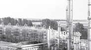 European renewable ethanol industry releases annual State of the Industry Report