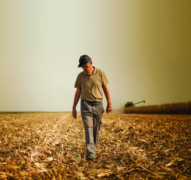 How a biofuels phase-out would hit Europe's struggling farmers