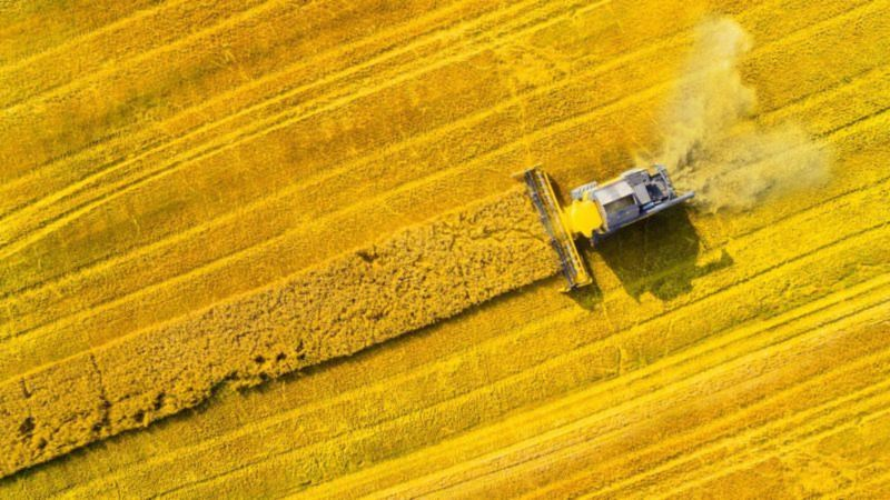 Is EU biofuel policy realistic enough?